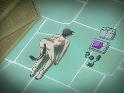 Hentai anime femdom experiment