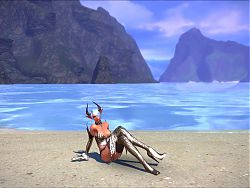 Tera: Castanic Whore Dancing on the Beach High Quility